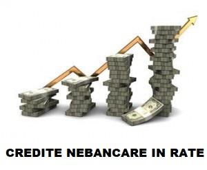 credite in rate multiple